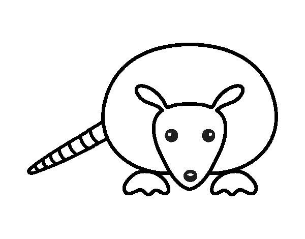 A armadillo cub coloring page