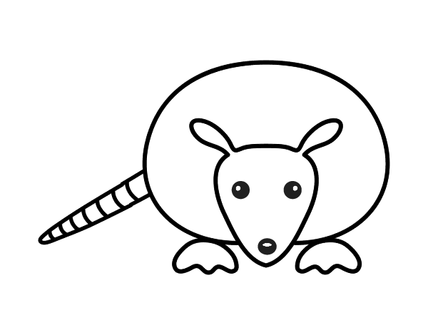armadillo coloring pages printable armored