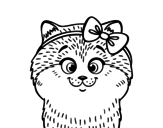 A cat with ribbon coloring page