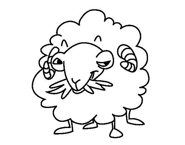 Angora goat coloring page