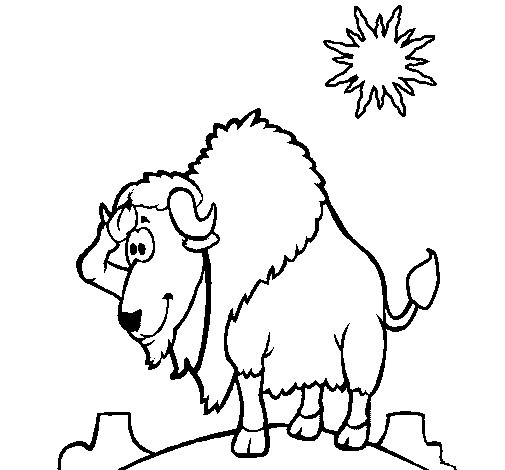 Bison in desert coloring page