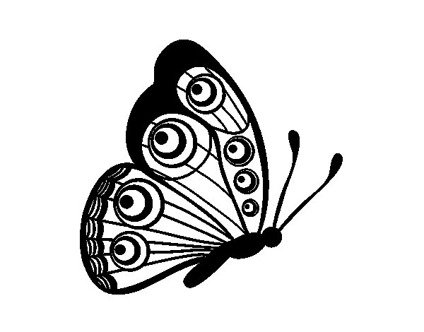 Butterfly right coloring page