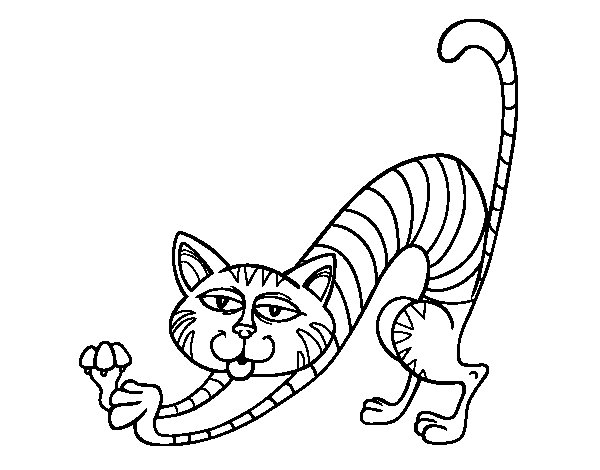 cat by stretching coloring page coloringcrewcom