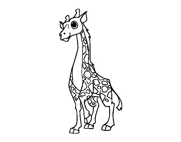 Female giraffe coloring page