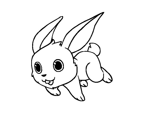Field rabbit coloring page