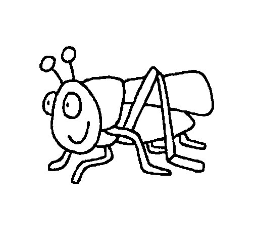 Grasshopper 2 coloring page