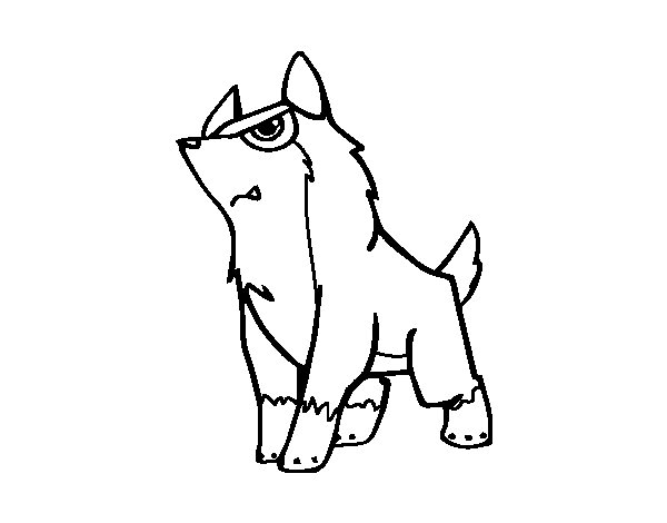 gray wolf coloring pages - photo#30