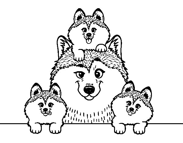 Husky family coloring page - Coloringcrew.com