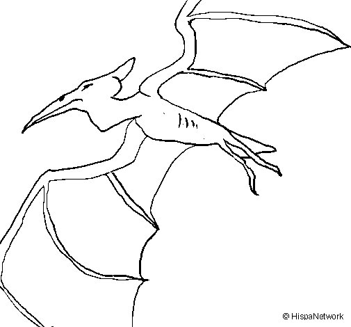 Pterodactyl II coloring page