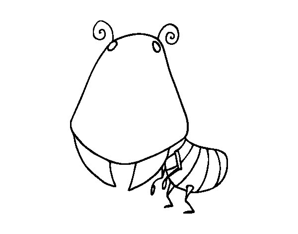 Red imported fire ant coloring page