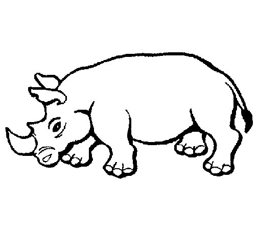 Rhinoceros 2 coloring page