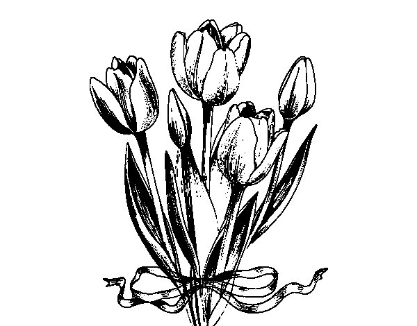 Tulips with a bow coloring page