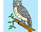 Coloring page Barn owl painted byBren