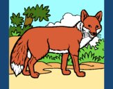 Coloring page Fox painted bypinkrose