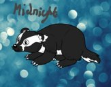 Coloring page Iberian badger painted byKitty