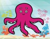 Childrish octopus