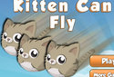 Kitten can fly