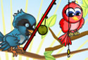 Love of parrots