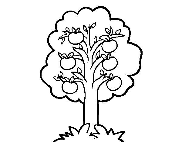 An apple tree coloring page