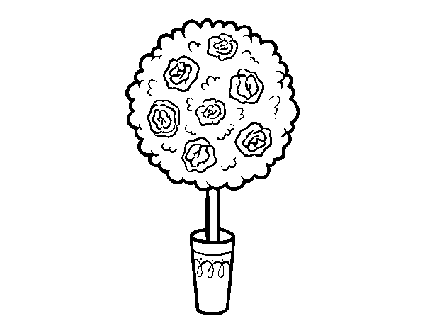 Shrub coloring page
