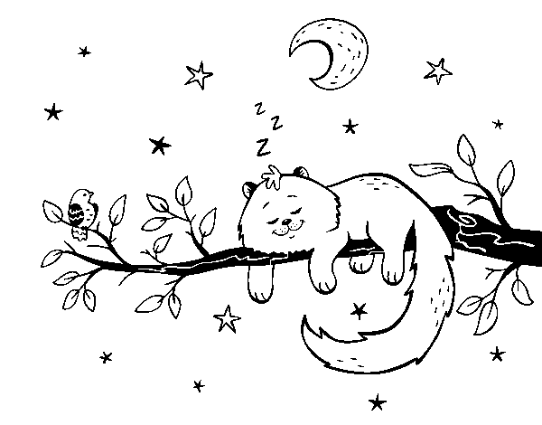 The cat and the moon coloring page